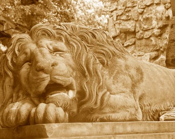 Львівські леви очима дітей