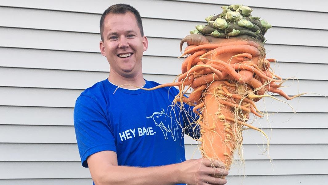 Фермер из Миннесоты вырастил крупнейшую в мире морковь
