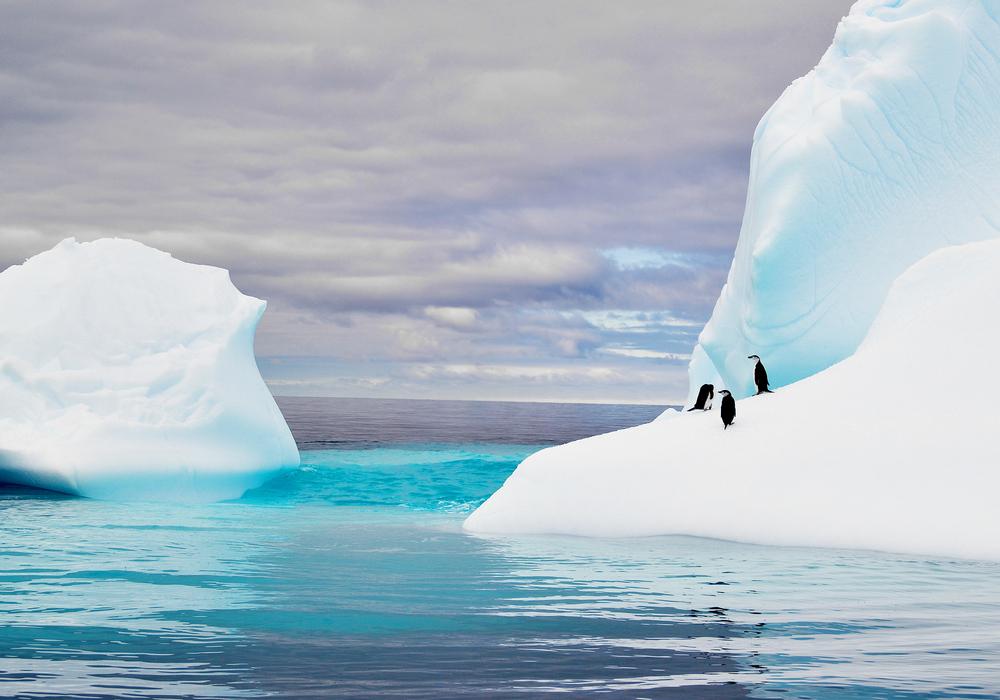 Гигантский айсберг у берегов Антарктиды раскололся и продолжает таять