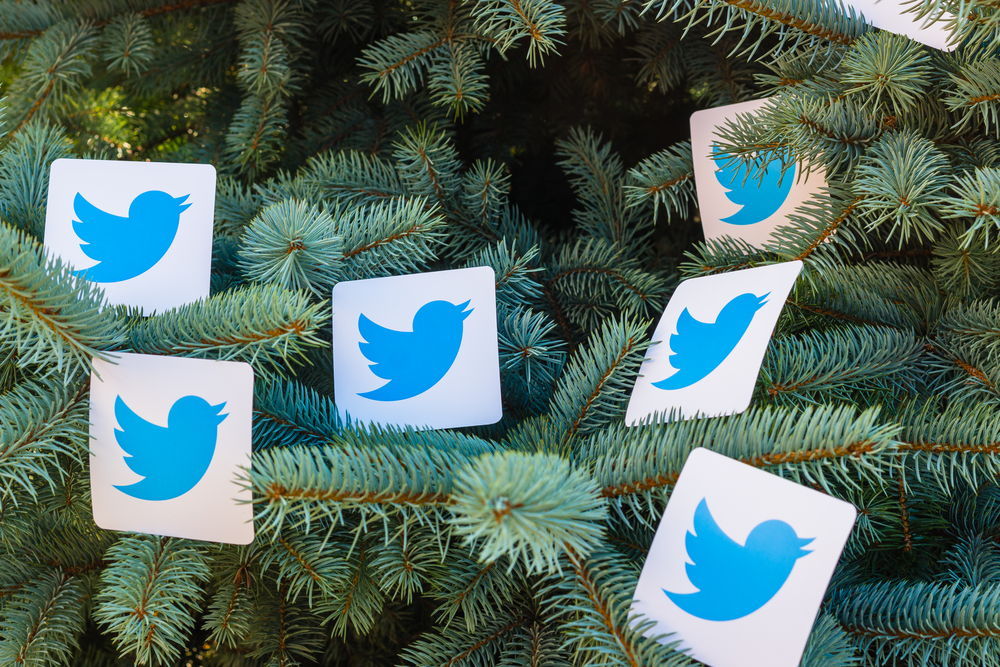 Названы самые популярные животные Twitter.Вокруг Света. Украина