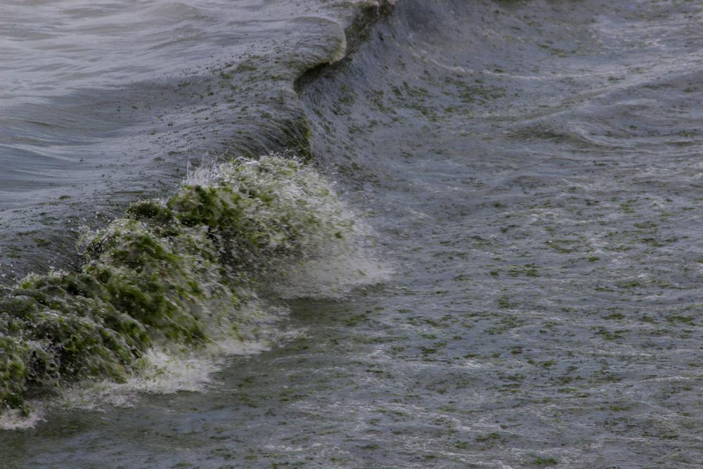 Херсон уйдет под воду, а Крым станет островом: карта Украины после глобального потепления