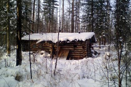 В России медведь украл у охотника два ружья. Полиция начала проверку