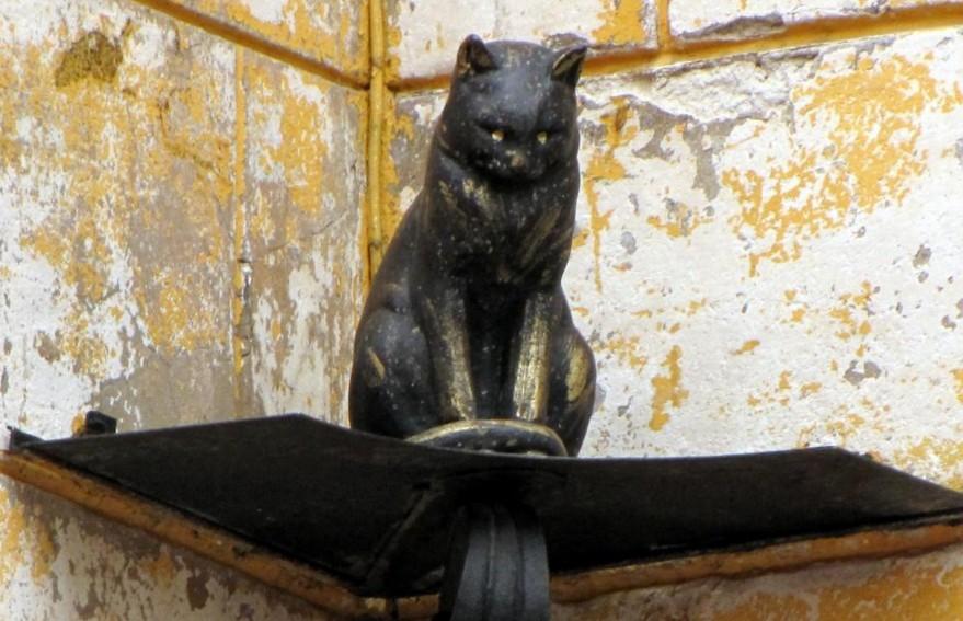 В Петербурге ограбили кота Елисея