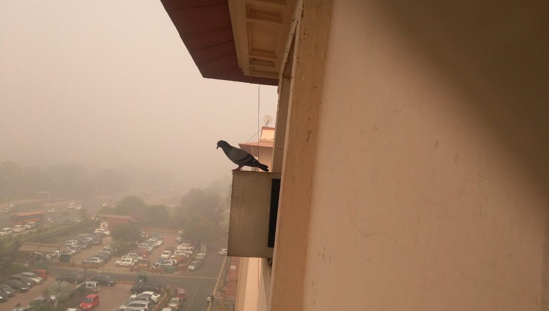 Дели утонул в густом смоге