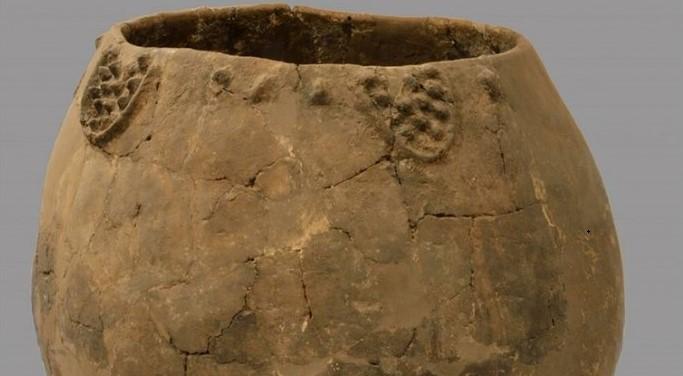 Найдено древнейшее виноградное вино возрастом 8 тысяч лет