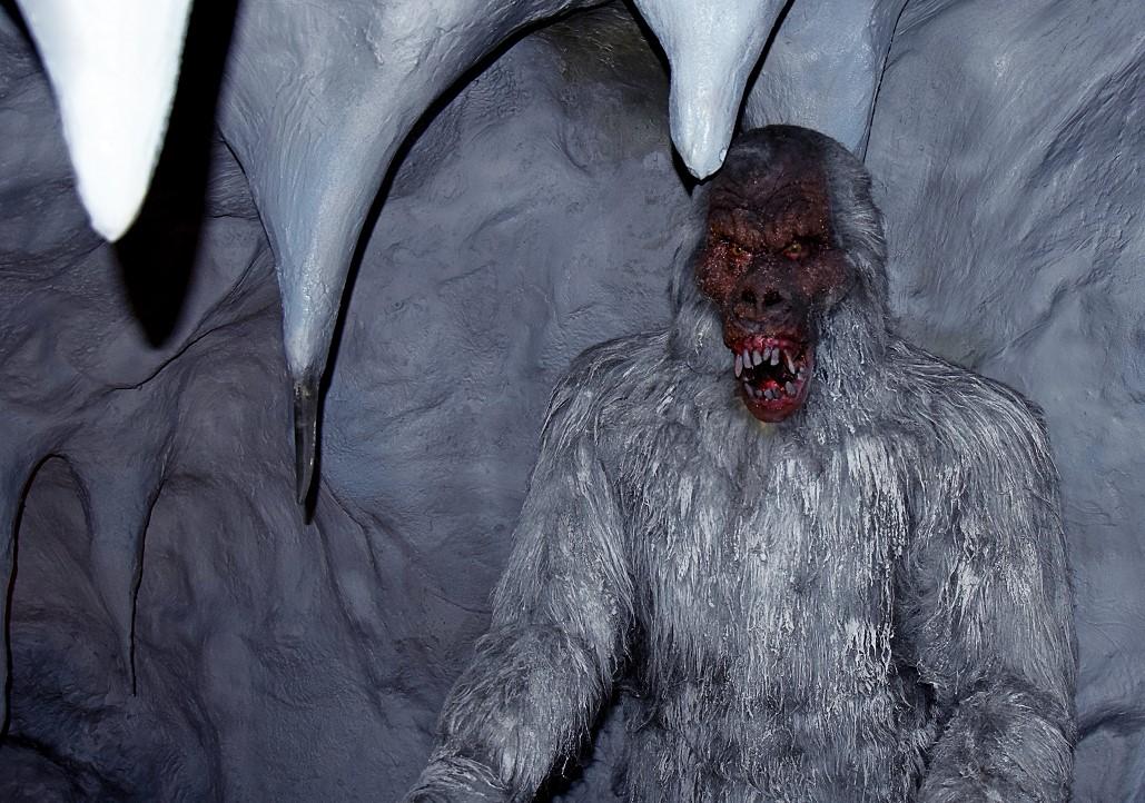 Снежный человек оказался медведем. Или собакой