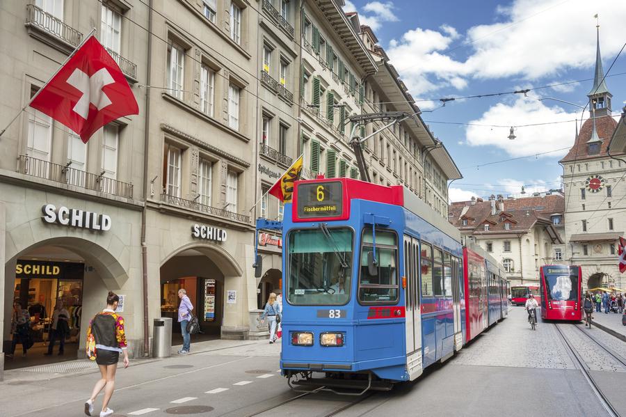 Коммуналка, музеи и котики: на что швейцарцы тратят зарплату?