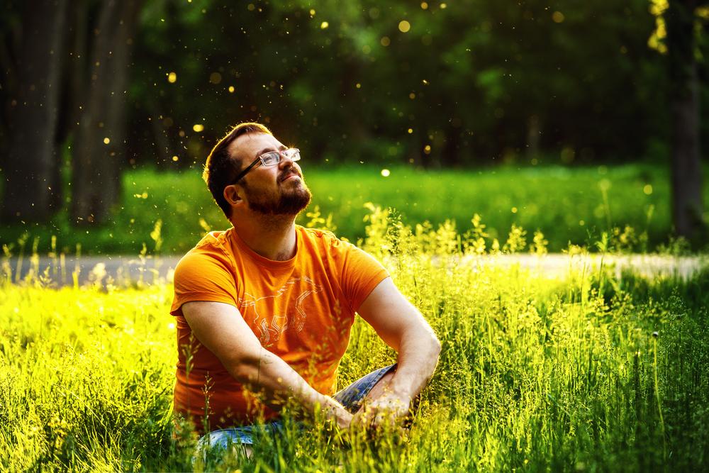 Дышите глубже! Ученые доказали: наблюдение за природой делает нас счастливее.Вокруг Света. Украина