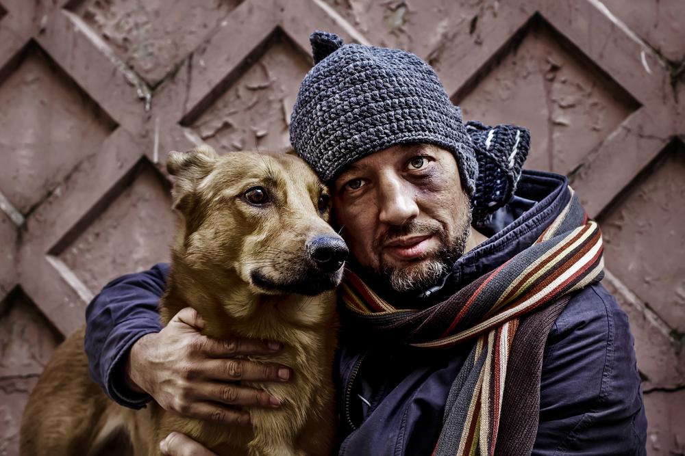 Люди больше жалеют собак, чем других людей: доказано учеными