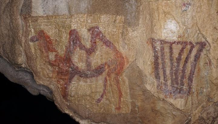 На Урале нашли древнейшее изображение верблюда