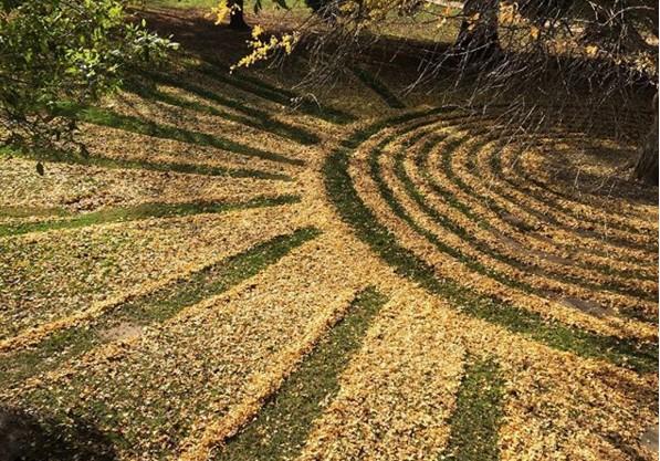 Американка создает уличные картины из опавших листьев.Вокруг Света. Украина