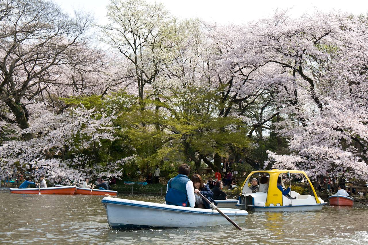 Семья по-японски: где знакомиться, во сколько жениться и как воспитывать детей