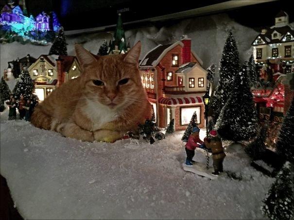 Я съел Рождество: немного о несовместимости ёлок и животных.Вокруг Света. Украина