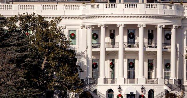 На лужайке Белого дома спилили историческое дерево