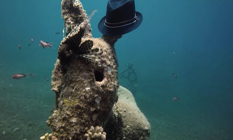 На дне Красного моря обнаружили осла в шляпе