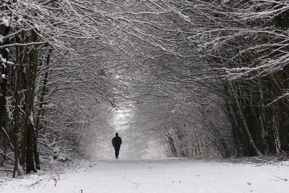 В декабре мужчины чаще всего пропадают без вести — ученые