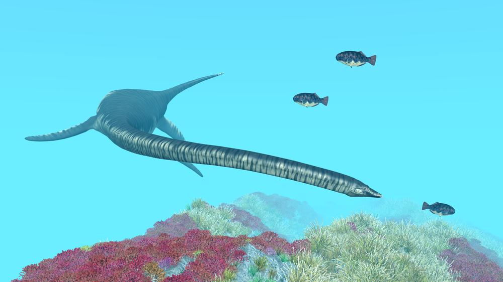 Ученые обнаружили кости древнейшего плезиозавра