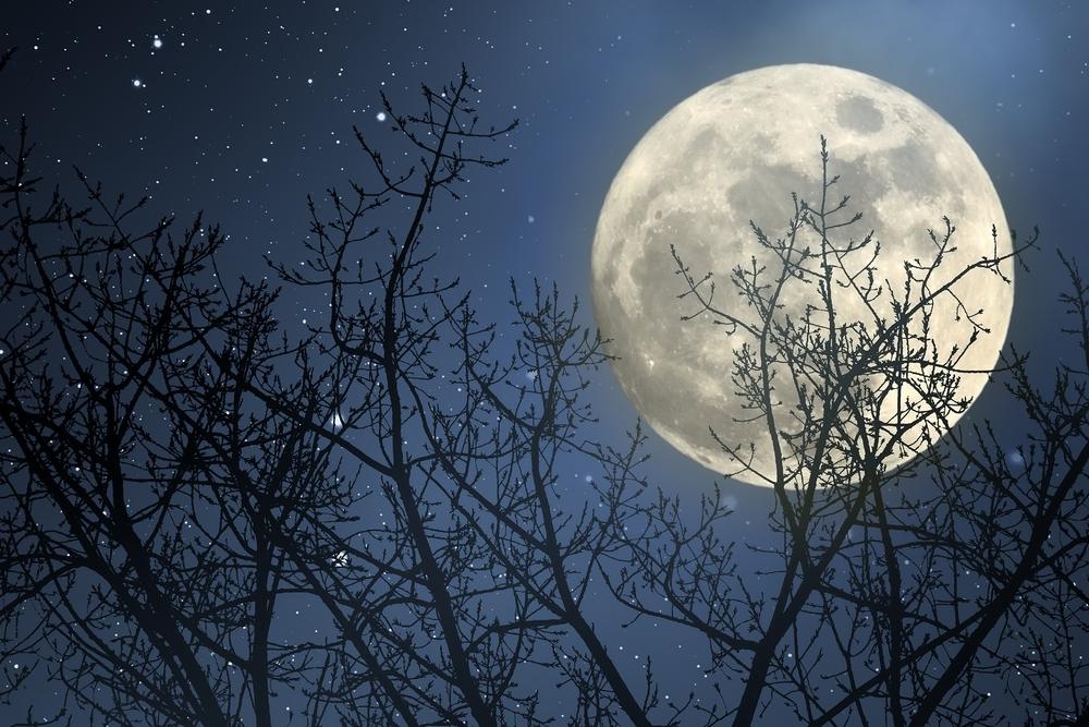 В ночь на 4 декабря украинцы увидят суперлуние