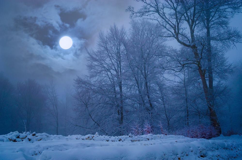 В Северном полушарии грядет самая длинная ночь в году