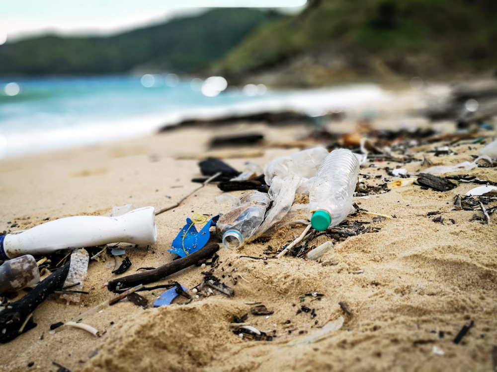 Море пластика вокруг Великобритании: ученые бьют тревогу