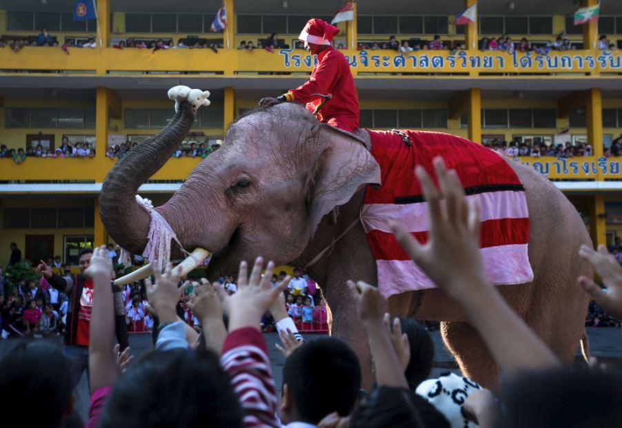 Верхом на слоне: как Санта добрался в Таиланд