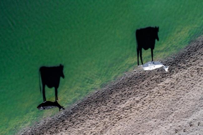 ТОП впечатляющих снимков, сделанных с дрона ТОП впечатляющих снимков, сделанных с дрона 14 2