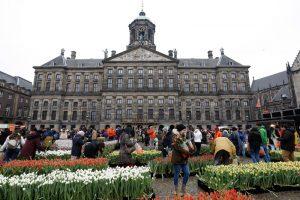 В День тюльпанов в Амстердаме раздали 200 тысяч цветов