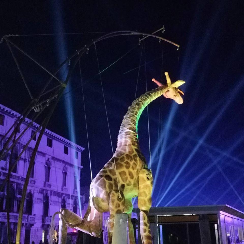 Как проходит карнавал в Венеции-2018: расписание и яркие фото Как проходит карнавал в Венеции-2018: расписание и яркие фото 26992600 1055142044628147 6722766261009671901 n
