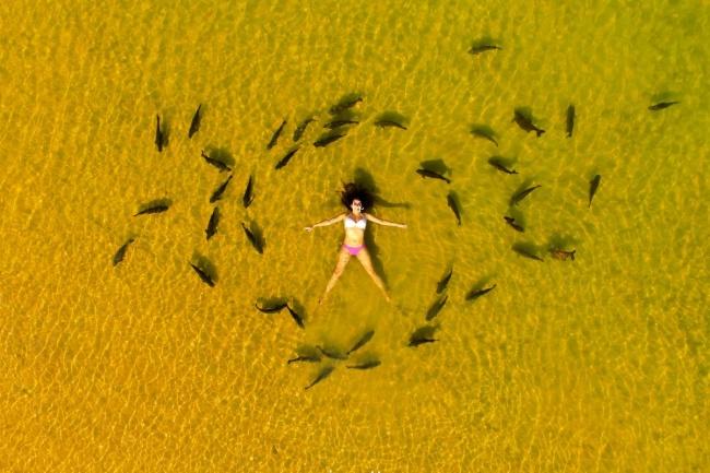 ТОП впечатляющих снимков, сделанных с дрона ТОП впечатляющих снимков, сделанных с дрона 3 26