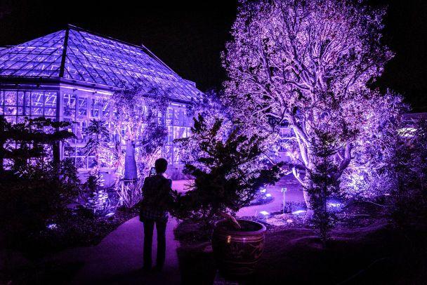 В Токио откроют музей иллюзий В Токио откроют музей иллюзий 3