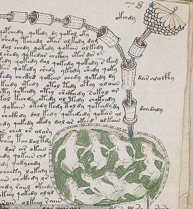 Программист взломал код средневекового манускрипта Войнича Программист взломал код средневекового манускрипта Войнича 43FF80F500000578 4861262 image a 3 1504776920898