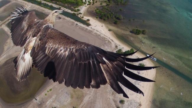 ТОП впечатляющих снимков, сделанных с дрона ТОП впечатляющих снимков, сделанных с дрона 5 15