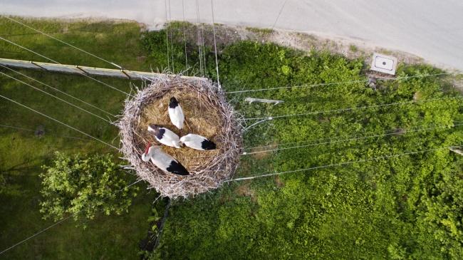 ТОП впечатляющих снимков, сделанных с дрона ТОП впечатляющих снимков, сделанных с дрона 9 8