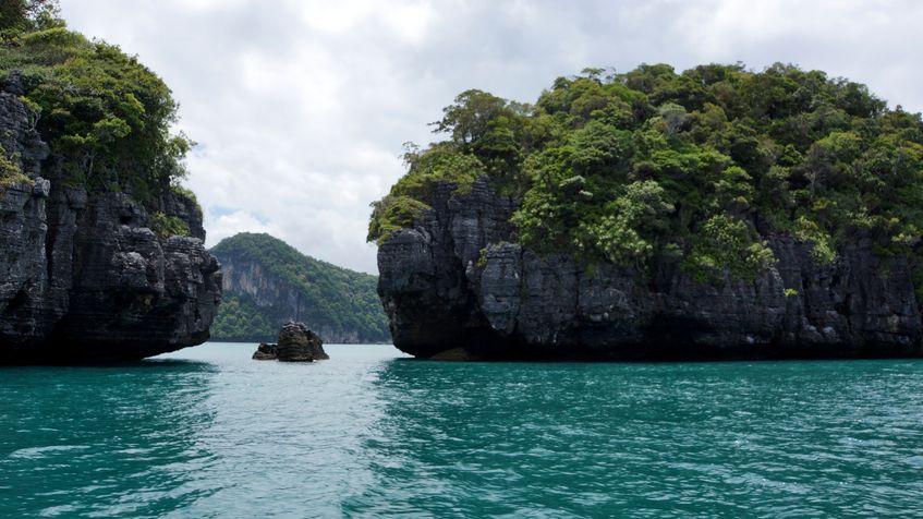 что смотреть в Малайзии Неоновые светлячки и гигантский цветок: что смотреть в Малайзии Foto2