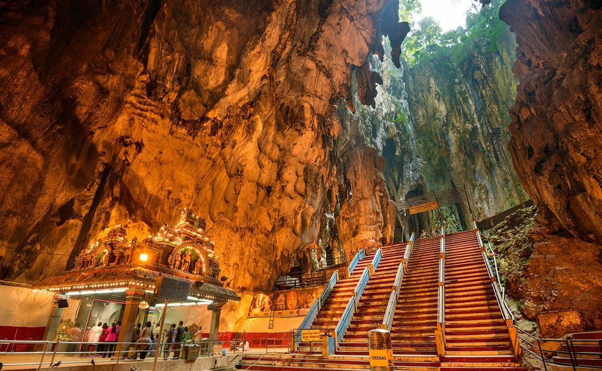 что смотреть в Малайзии Неоновые светлячки и гигантский цветок: что смотреть в Малайзии Foto3