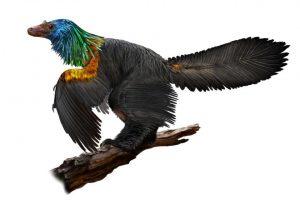 Ученые обнаружили динозавра с радужными перьями