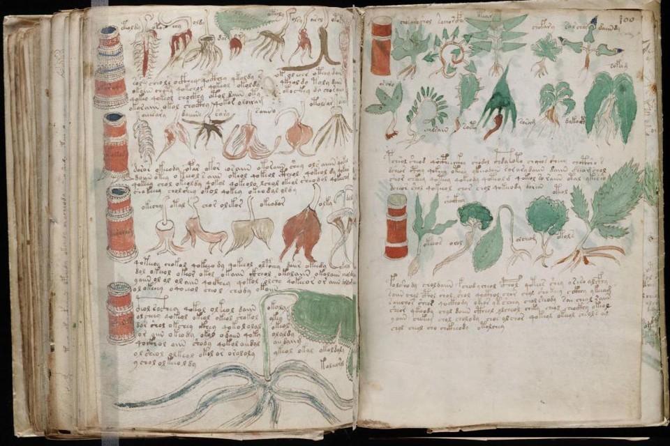 Программист взломал код средневекового манускрипта Войнича.Вокруг Света. Украина