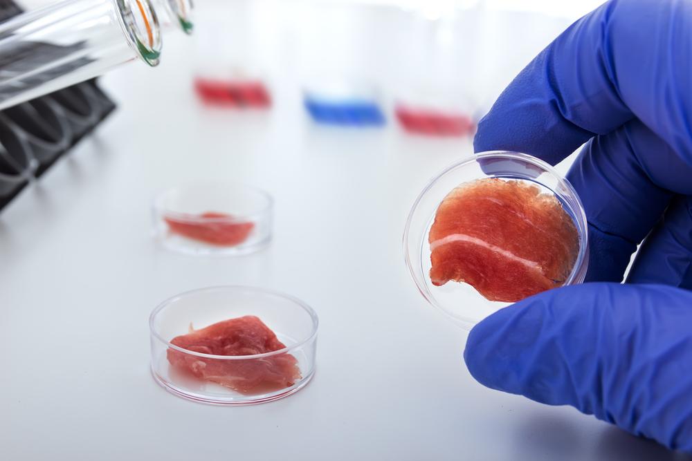 Искусственное мясо появится на полках магазинов к 2021 году