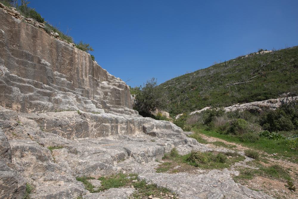 Древнейшие останки переселенцев из Африки обнаружены в Израиле Древнейшие останки переселенцев из Африки обнаружены в Израиле shutterstock 258315527