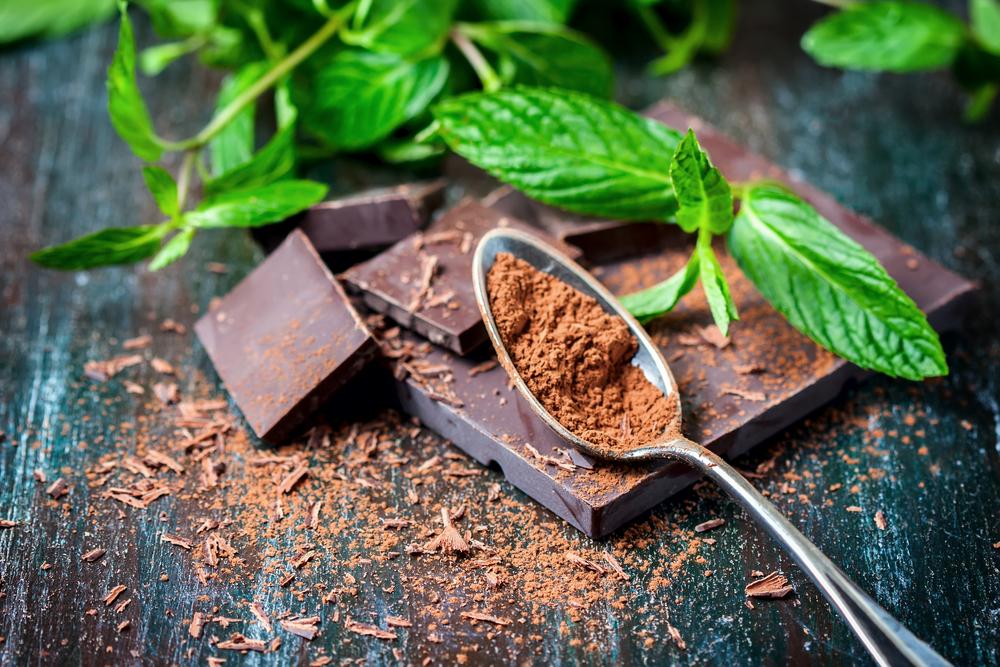 Ученые предупреждают: через 40 лет в мире не останется шоколада