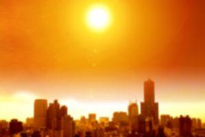 Прошлый год стал одним из самых теплых в истории