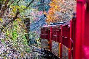 Японцы научили поезда лаять, как собака, и фыркать, как олень