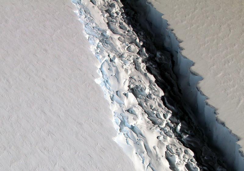 Ученые исследуют экосистему Антарктики, которая 120 000 лет была скрыта подо льдом