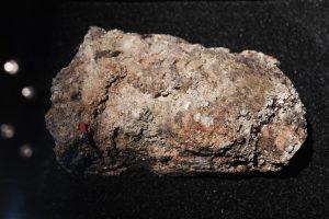 В Музее Лондона выставили отходы из канализации
