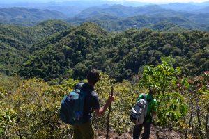 Нави и длинношеие женщины: поход в таиландские джунгли