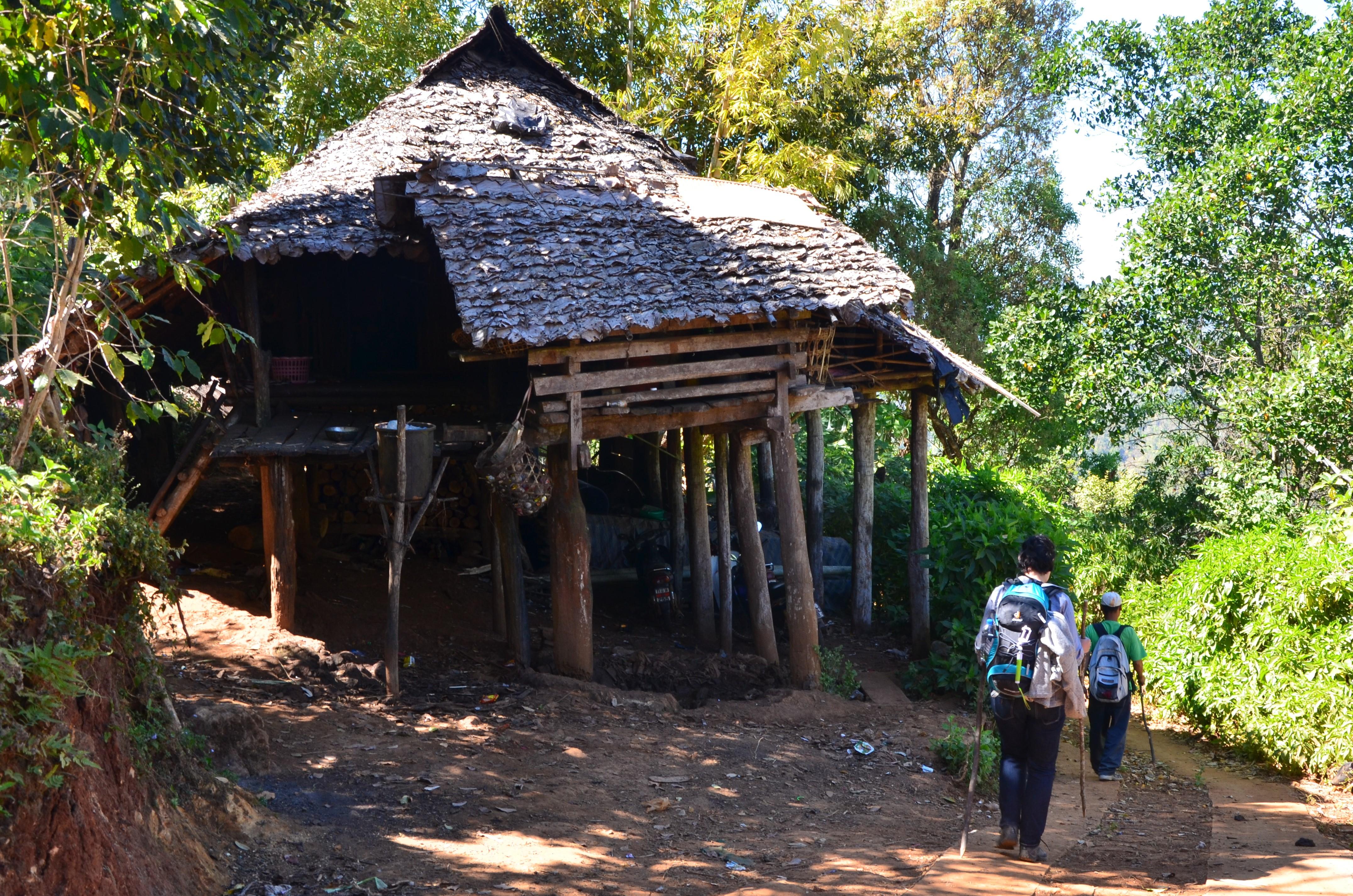 Нави и длинношеие женщины: поход в таиландские джунгли Нави и длинношеие женщины: поход в таиландские джунгли DSC 0953