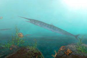 Ребенок нашел древнего рыбоящера на территории монастыря в Колумбии