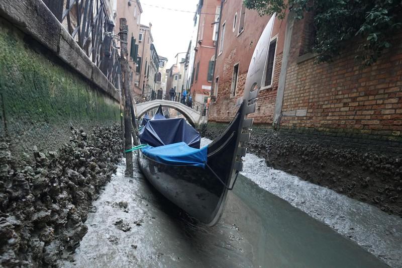Гондольеры Венеции могут остаться без работы: каналы мелеют