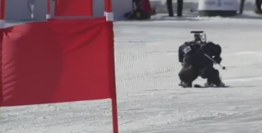 На Олимпиаде в Корее прошли лыжные гонки роботов