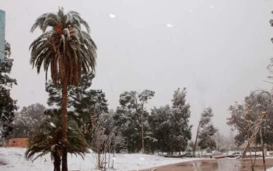 Сахару засыпало снегом